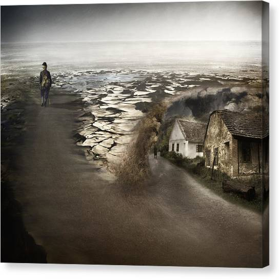 Paths Canvas Print by Akos Kozari