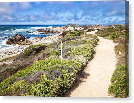 Canvas Print featuring the photograph Pathway At Asilomar State Beach by Priya Ghose