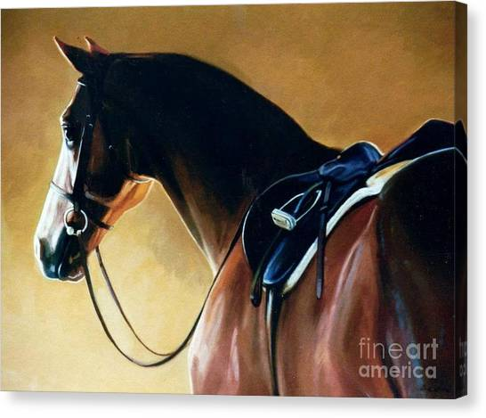 Saddles Canvas Print - Patience by Janet  Crawford