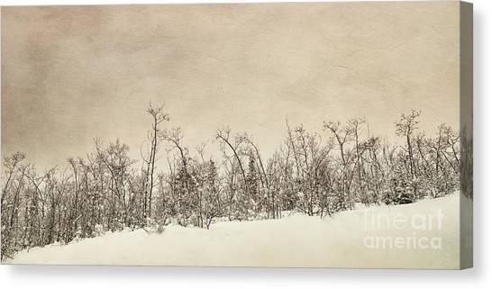 Treeline Canvas Print - Patience by Priska Wettstein