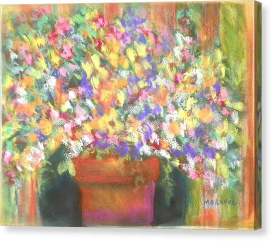 patio plants I Canvas Print