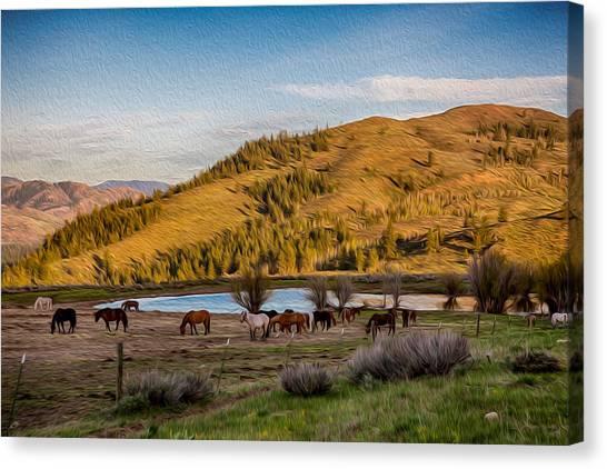Witkowski Canvas Print - Patterson Mountain Afternoon View by Omaste Witkowski