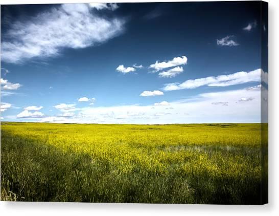 Pawnee Grasslands Canvas Print