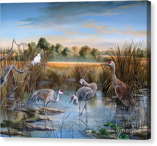 Florida State Canvas Print - Paynes Prairie Preserve State Park- Day Of The Sand-hill by Daniel Butler
