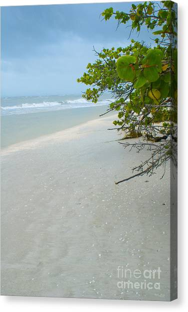 Peace And Quiet On Sanibel Island Canvas Print