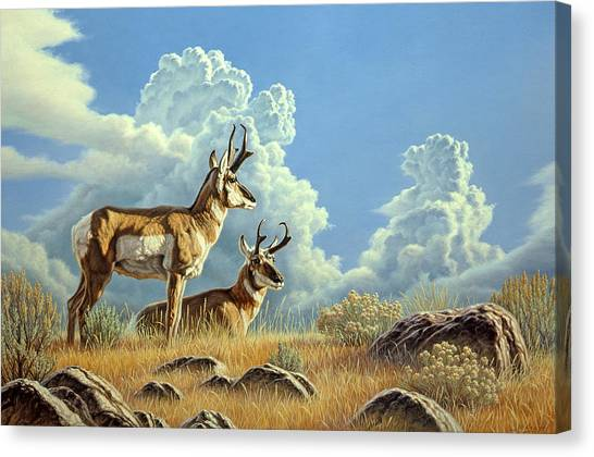 Peaceful Afternoon Canvas Print by Paul Krapf