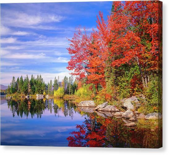 Peaceful Colorful Autumn Fall Foliage Canvas Print