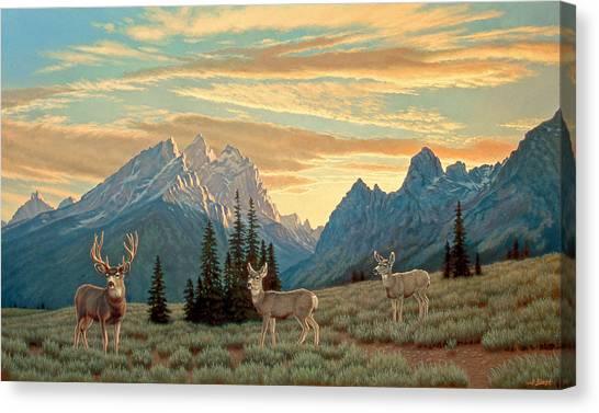 Tetons Canvas Print - Peaceful Evening - Tetons by Paul Krapf