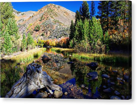 Bishops Canvas Print - Peaceful Fall Morning by Scott McGuire