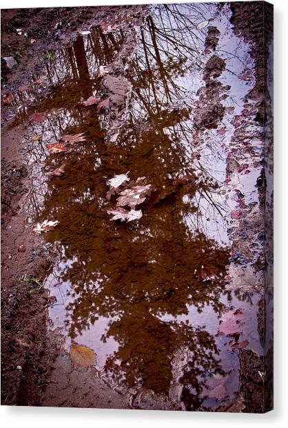 Peaceful Reflections Canvas Print by Brian Gibson