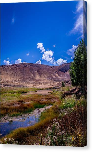 Peaceful Valley II Canvas Print