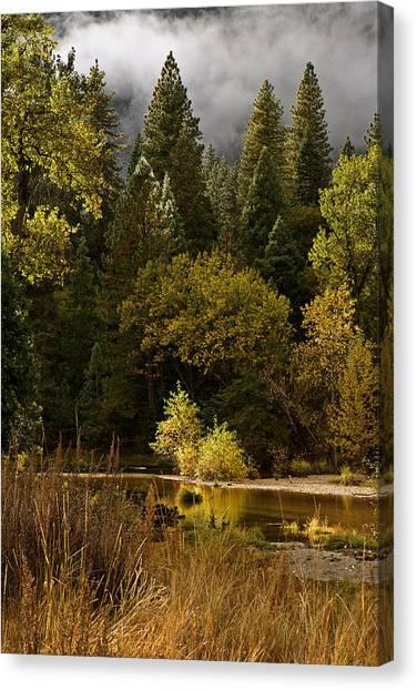 Peaceful Yosemite C6j8124 Canvas Print