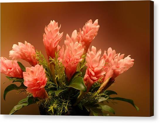 Peach Gibger Blossoms Canvas Print