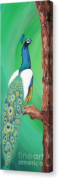 Peacock Canvas Print by Carlos Martinez