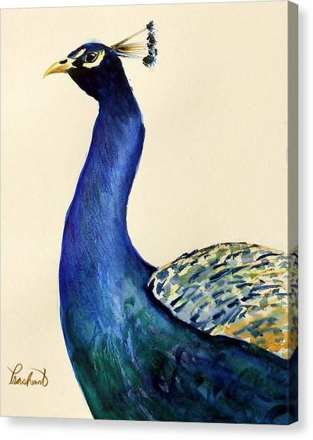 Peacock Portait Canvas Print by Prashant Shah
