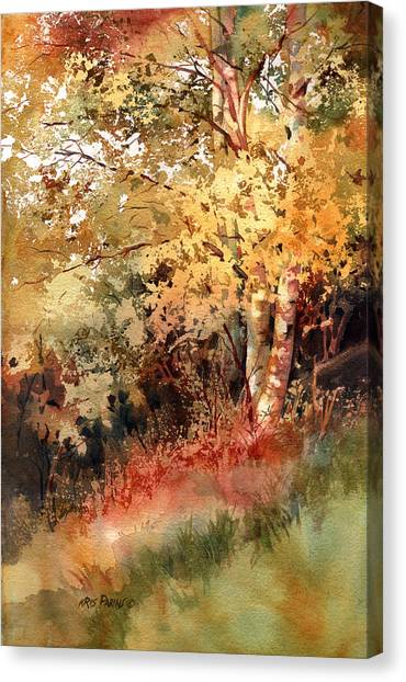 Peak Color Canvas Print
