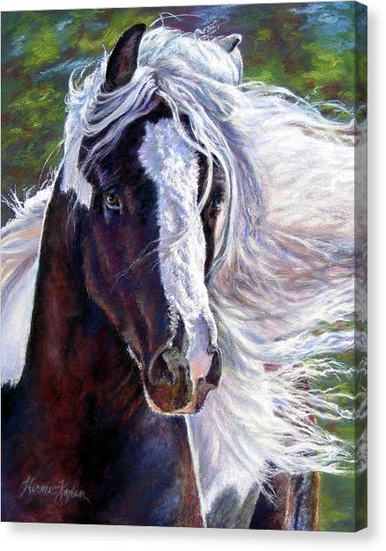 Pearlie King Gypsy Vanner Stallion Canvas Print
