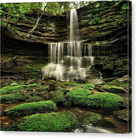 Waterfalls Canvas Print - Pearly Creek Falls Near Buffalo River by Tim Fitzharris