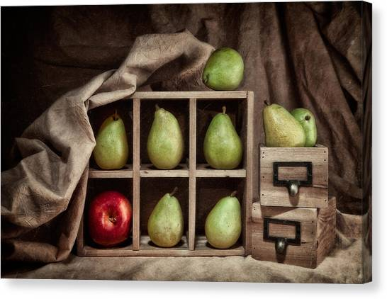 Drawers Canvas Print - Pears On Display Still Life by Tom Mc Nemar