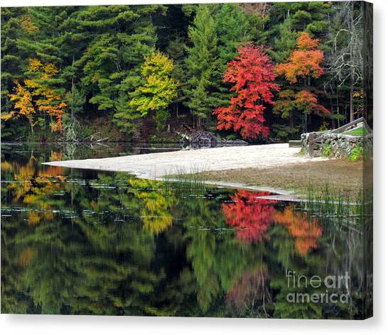 Peck Pond Autumn Reflections Ix Canvas Print
