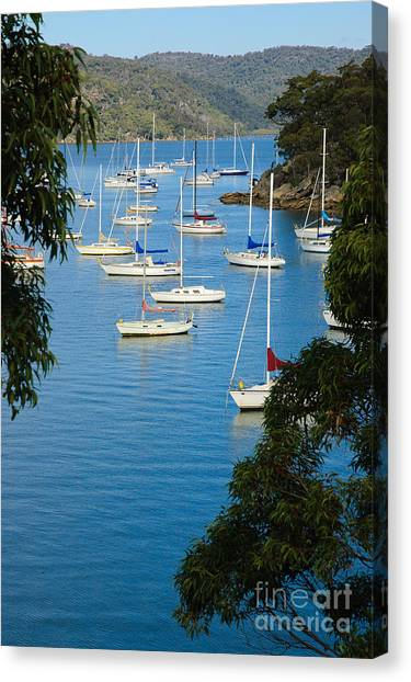 Peeping Through The Trees - Yachts Moored In A Quiet River Canvas Print