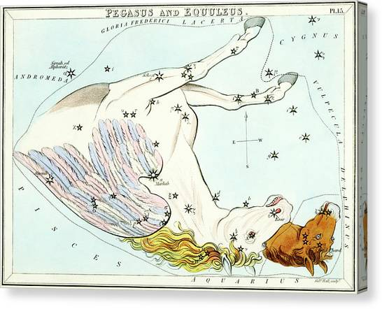 Pegasus Canvas Print - Pegasus And Equuleus Constellations by Royal Astronomical Society/science Photo Library