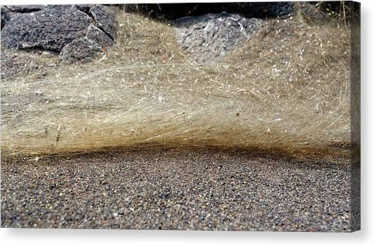 Pele Canvas Print - Pele's Hair by Michael Szoenyi