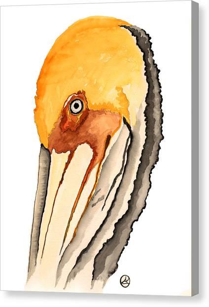 Pelican Canvas Print by Alexandra  Sanders