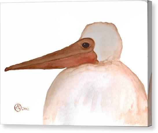 Pelican Chick Canvas Print by Alexandra  Sanders