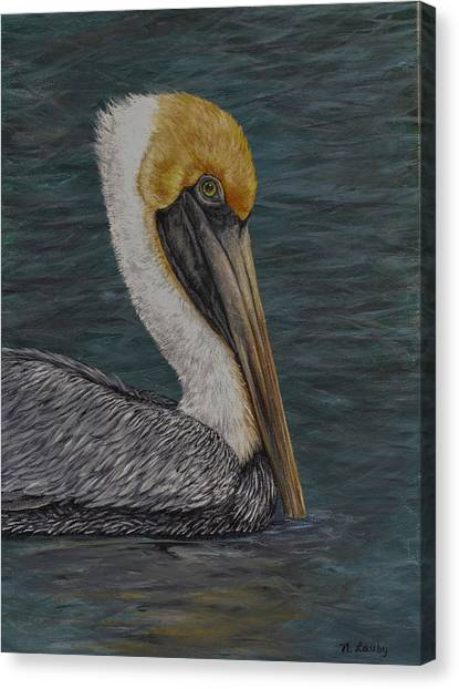 Pelican Floating In The Bay Canvas Print