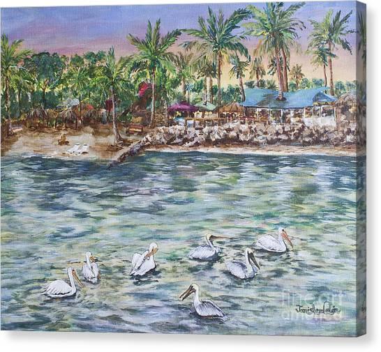 Pelican Medley Canvas Print