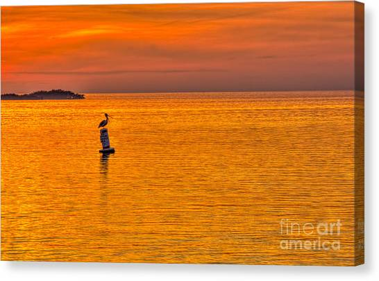 Pelicans Canvas Print - Pelican On A Buoy by Marvin Spates