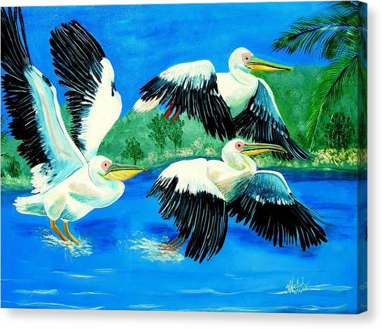 Pelican Trio Canvas Print by Kathern Welsh