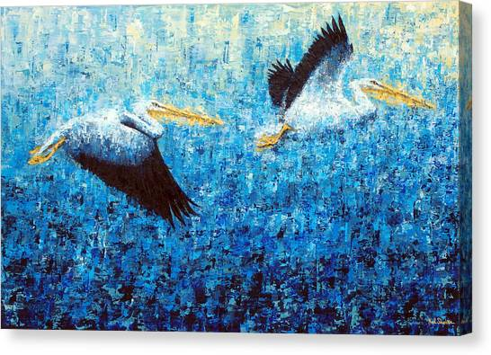 Pelicans 2 Canvas Print by Ned Shuchter