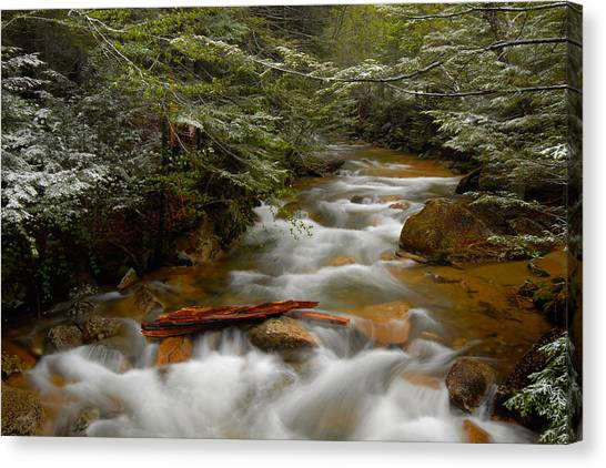 Pemigewasset River In Franconia Notch Canvas Print