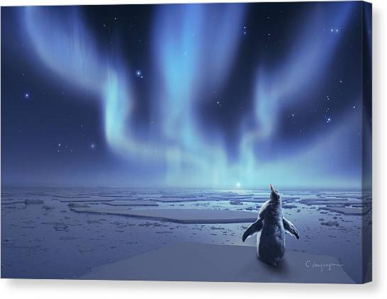 Antarctica Canvas Print - Penguin Dreams by Cassiopeia Art