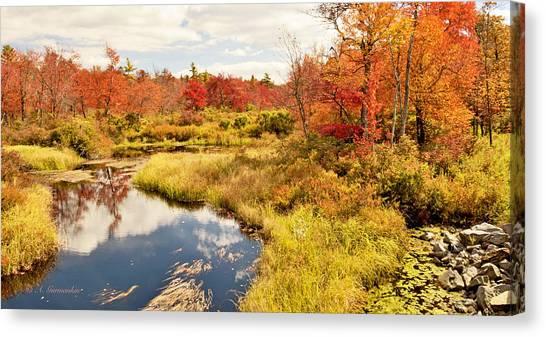 Pennsylvania Autumn Pocono Mountain Stream Canvas Print