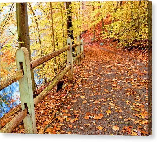 Pennypack Trail Philadelphia Fall Canvas Print