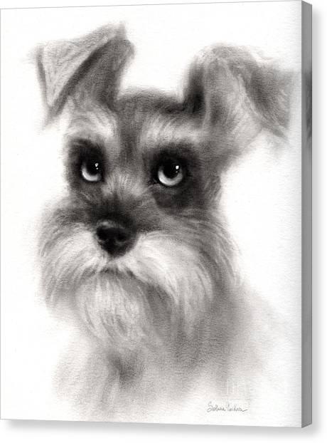 Schnauzers Canvas Print - Pensive Schnauzer Dog Painting by Svetlana Novikova