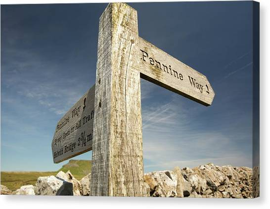 Three Pointer Canvas Print - Penyghent In The Yorkshire Dales by Ashley Cooper
