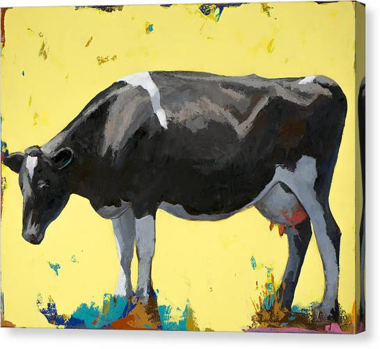 Cow Canvas Print - People Like Cows #12 by David Palmer