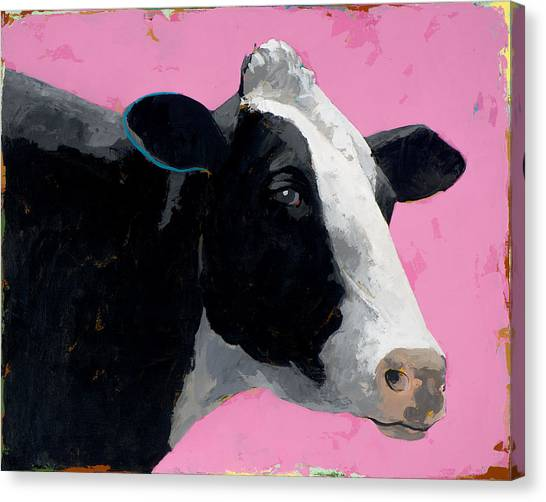 Cow Canvas Print - People Like Cows #13 by David Palmer