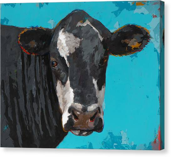 Cow Canvas Print - People Like Cows #8 by David Palmer