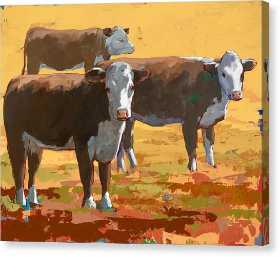 Cow Farms Canvas Print - People Like Cows #9 by David Palmer