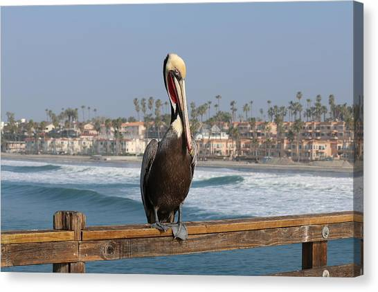 Perched On The Pier Canvas Print