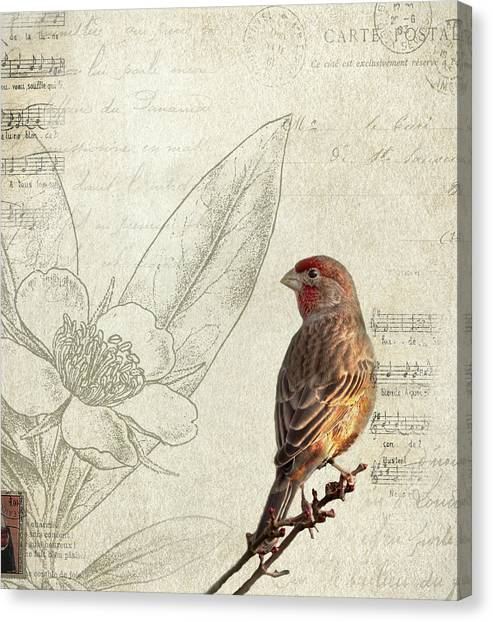 Perching Birds Canvas Print - Perched by Rebecca Cozart