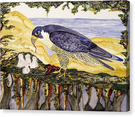 Peregrine Falcon Feeding Chicks Canvas Print by Alexandra  Sanders