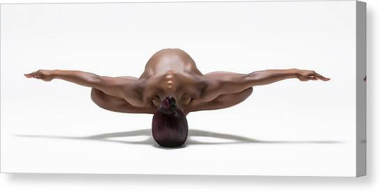 Muscles Canvas Print - Perfect Balance by Ross Oscar