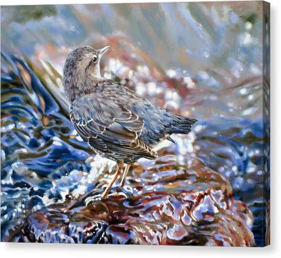 Perfect Camouflage  Canvas Print by Dianna Ponting