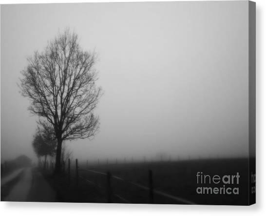 Perfect Sense II Canvas Print